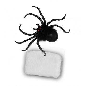 Čarodějnice - Pavouk s pavučinou