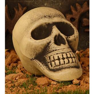 Halloween - Lebka - Guirca