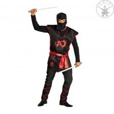 Ninja bojovník