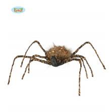 Tygrovitý pavouk 50 cm