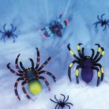Pavučina s pavouky