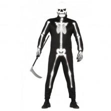 Skeleton - kostra