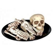 Kostra - 12 různých kostí
